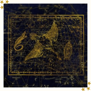 Cygnus Starlight Essence
